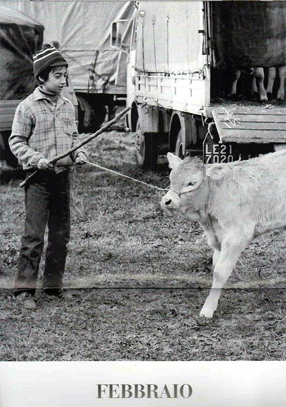 Fiera della Candilora, Martano 1984