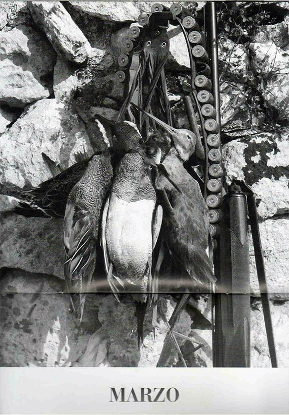 Marzaiole e Fucile, 1984